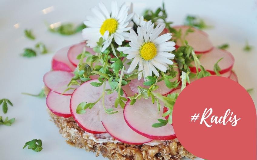 Avec le retour du printemps, nous allons manger des radis !